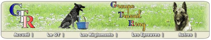 Groupe de Travail RING (GTR)