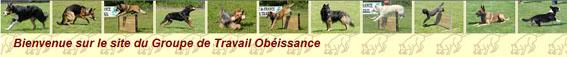 Groupe de Travail OBEISSANCE (GTO)
