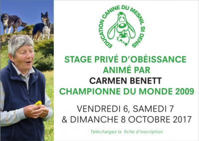 Stage annonce
