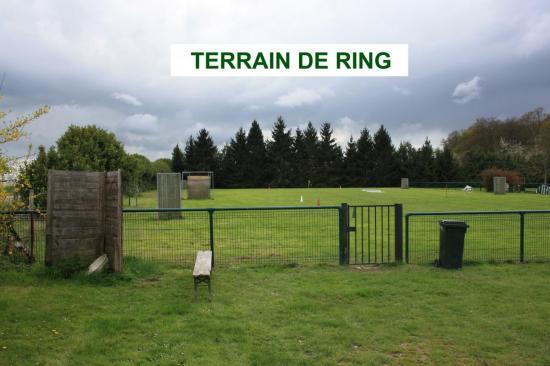 terrain-ring.jpg